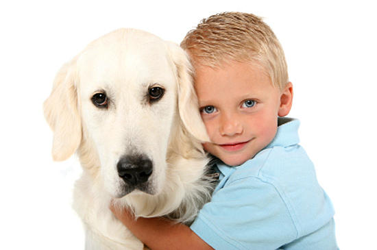 лечение паразитов у собак
