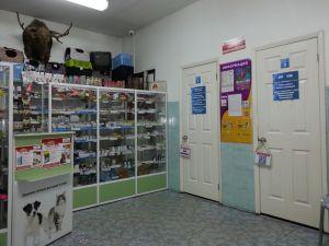 Вет клиника в центре
