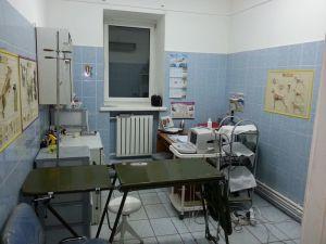 оборудование в вет клинике